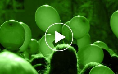 Limpiezas Castor. 1_video_violencia_2015 Videos