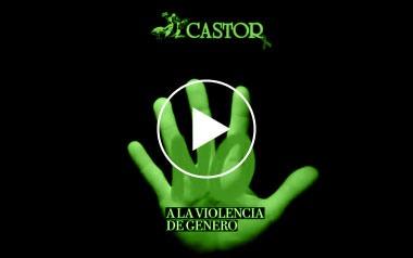 Limpiezas Castor. 6_video_violencia_2013 Videos