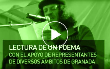 Limpiezas Castor. 7_video_violencia_2012 Videos