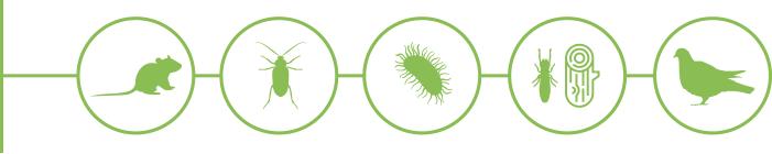 Limpiezas Castor. plagas-iconos Control de plagas
