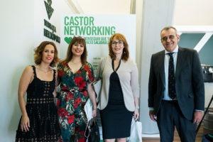 Limpiezas Castor. Castor-0021-300x200 Castor Networking