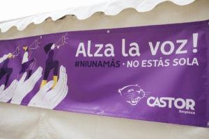 Limpiezas Castor. 25N-001-300x200 Violencia de Género 2019