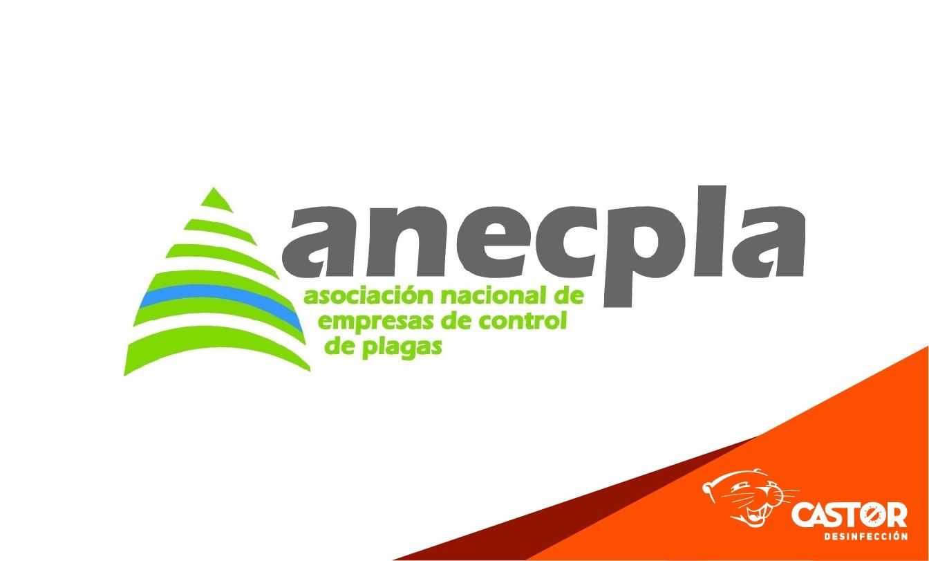 Limpiezas Castor. 2020_10_26_Web-05 Empresa de Limpieza Granada. Limpiezas Castor